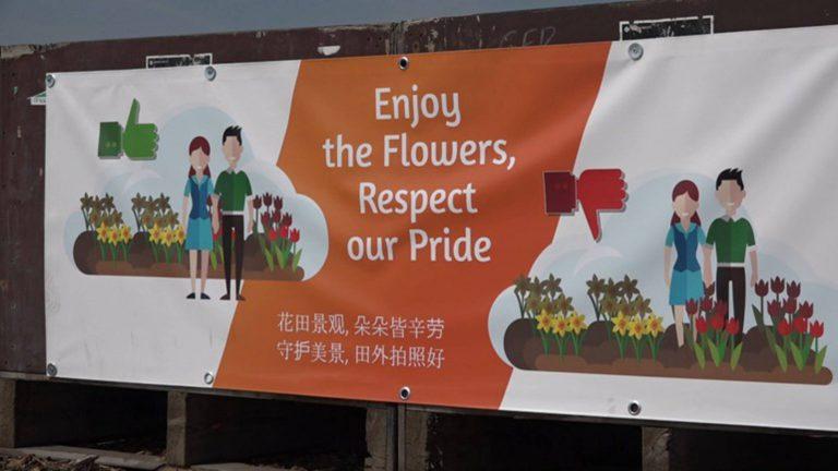Campagne poster: Toeristen blijven tulpen vertrappen