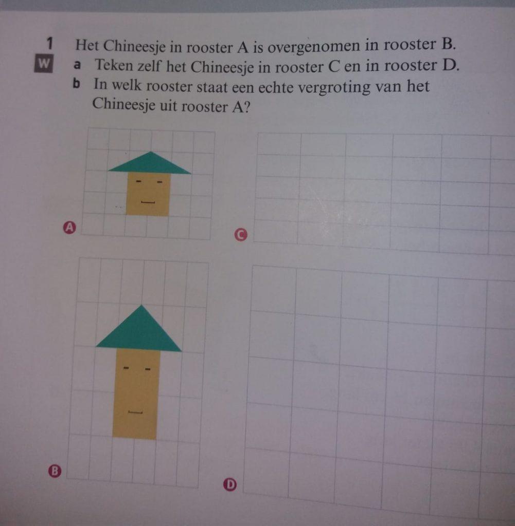 Asian Raisins, Casus Noordhoff: een racistische karikatuur in een wiskundeboek voor middelbare scholen.